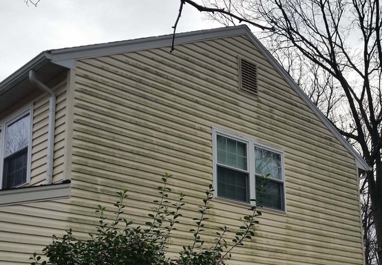 Dirty Vinyl Siding Needs Power Washing
